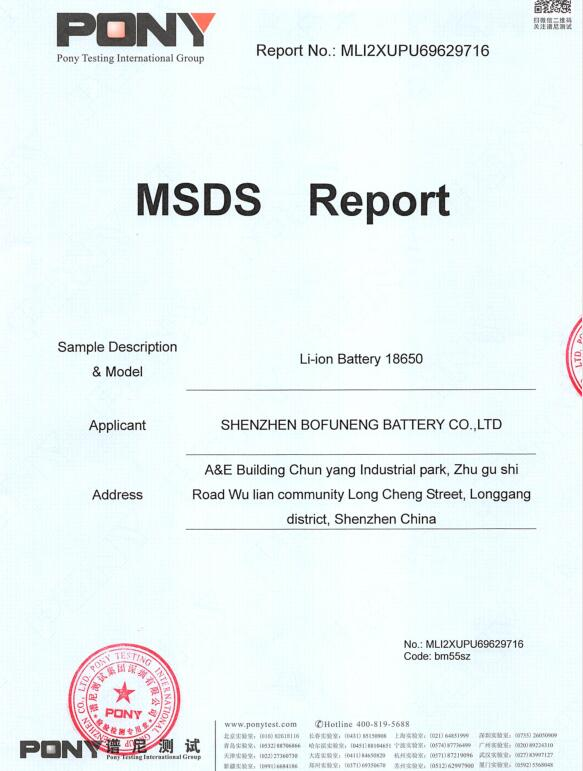 MSDS PONY Testing Battery Report